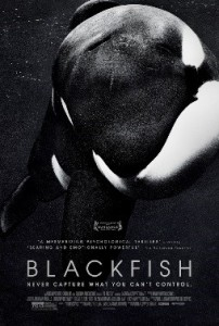 "Cover shows a killer whale and the title, ""Blackfish"""