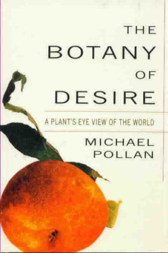 An orange piece of fruit takes center stage on the cover