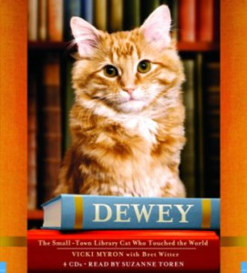 Dewey the Cat sits above two books.