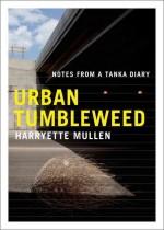 A tumbleweed in an urban setting