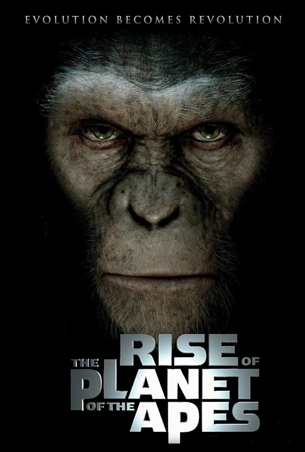 Rise of the Planet of the Apes. A close up of the face of an ape who looks determined.