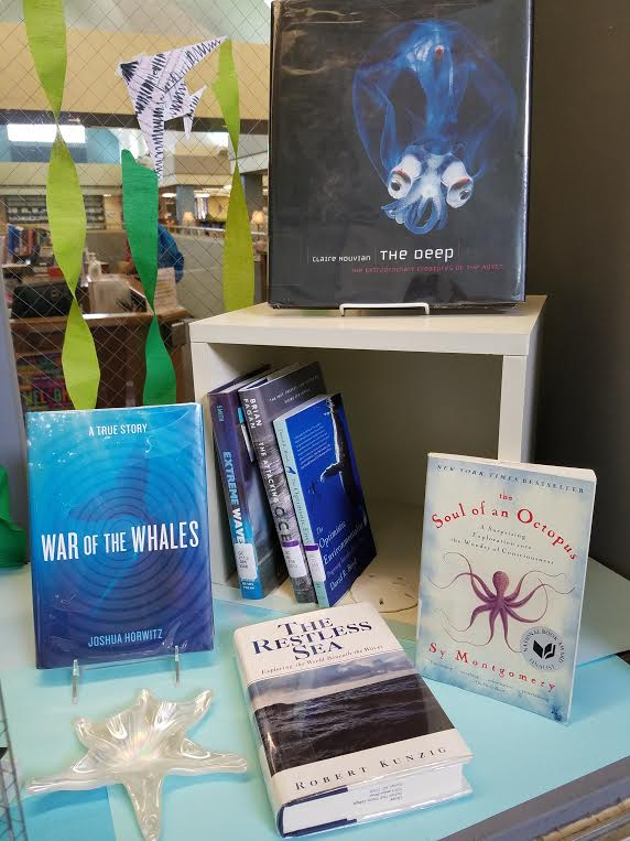 Library display window