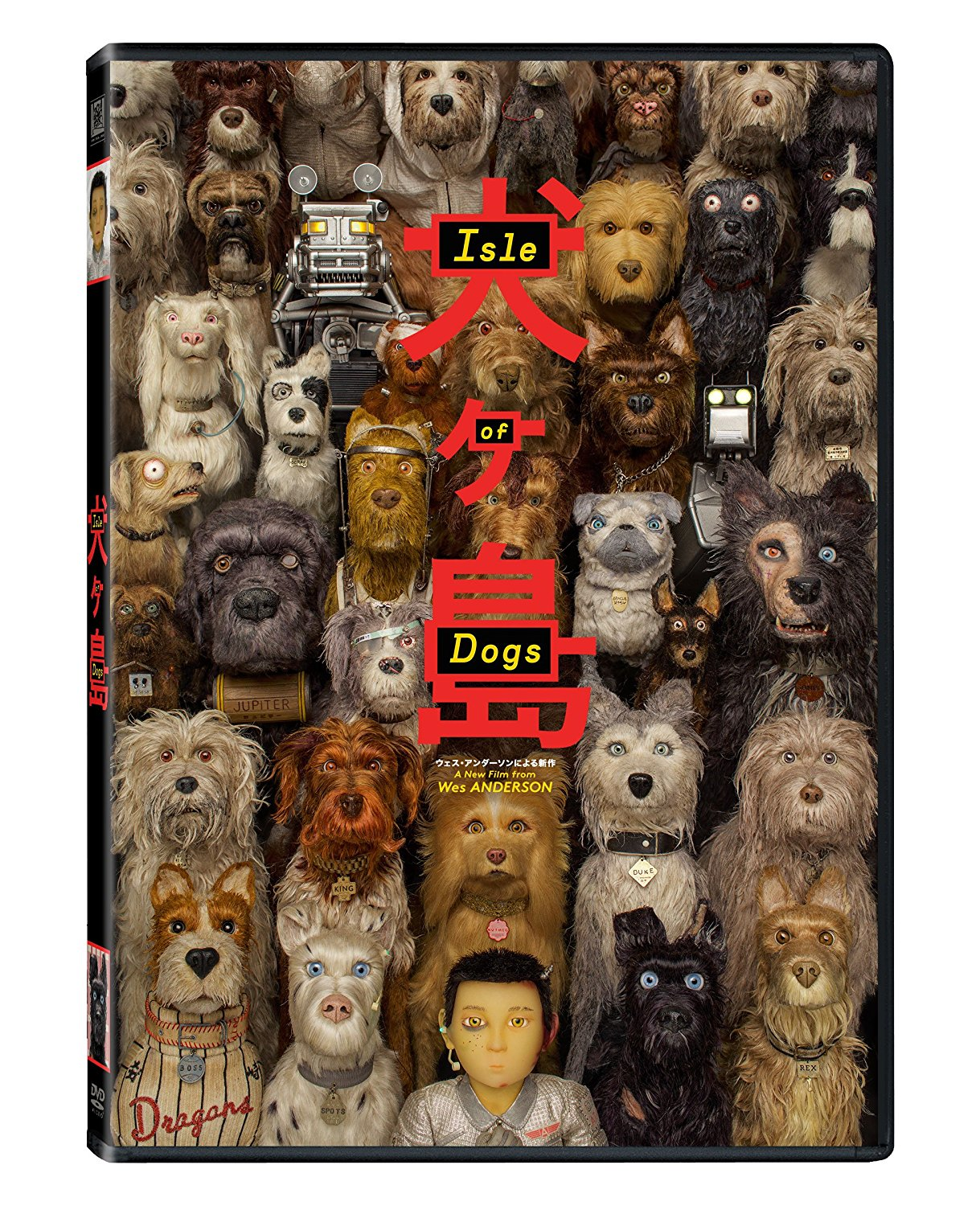 A bunch of dogs surround a human boy, all looking at the viewer.