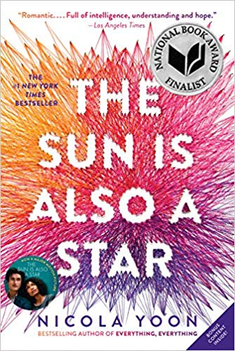 Sun is Also a Star book cover